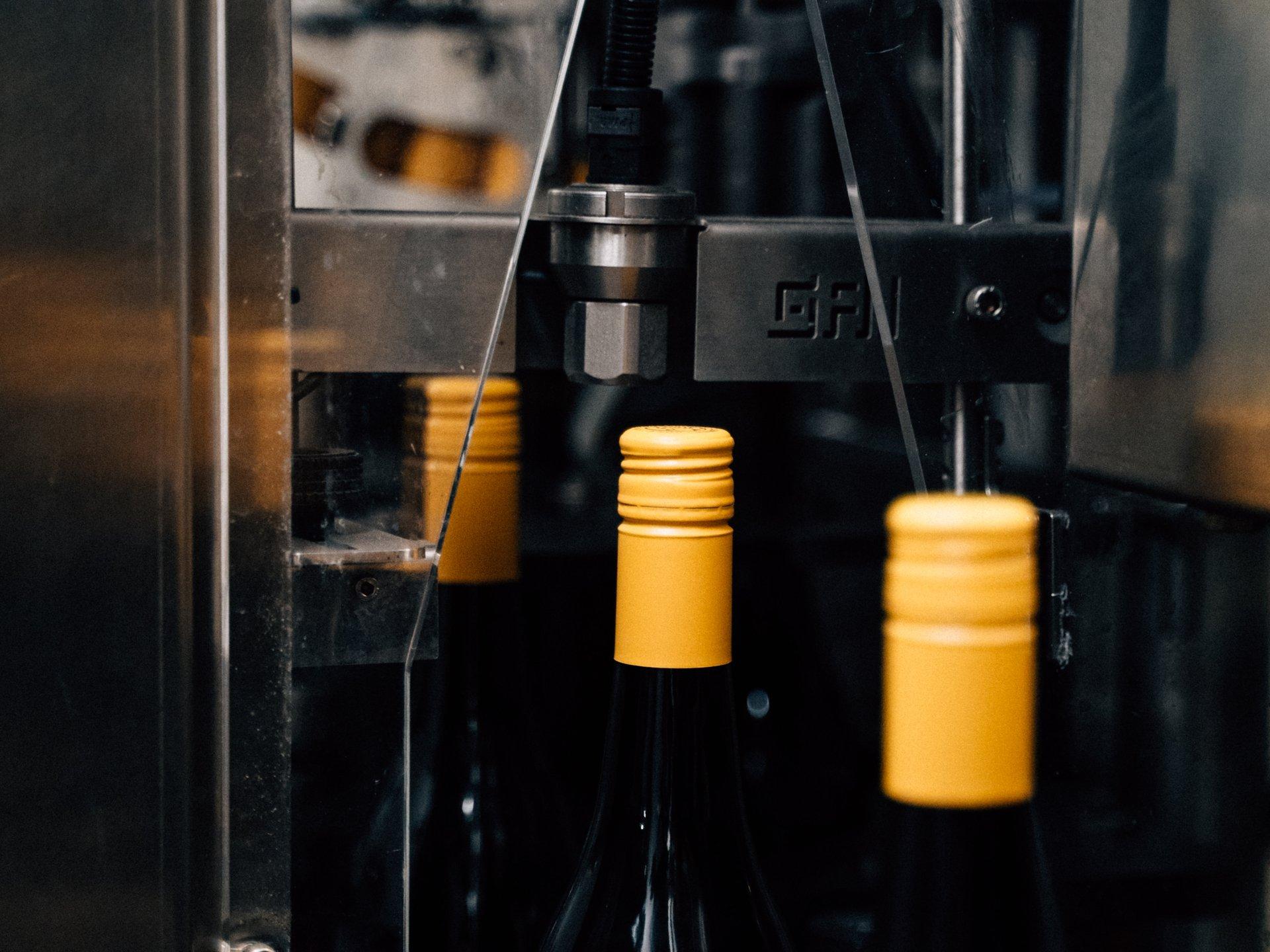Wine Bottles - bottling line